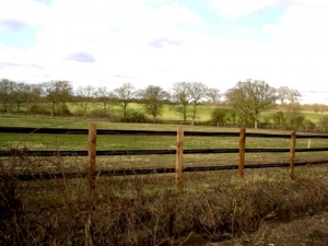 Horse fence examples